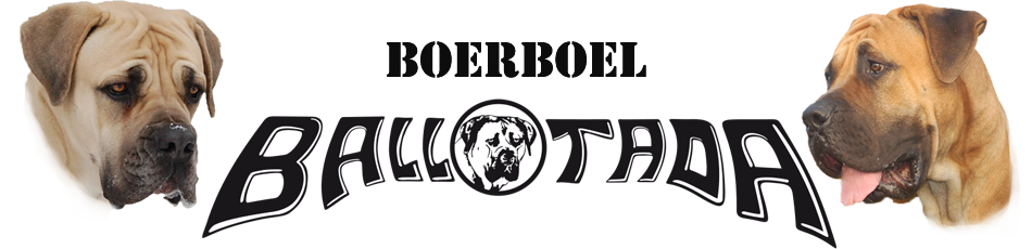 Logo ballotada